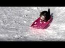 そりとねこ。 The sled and Maru