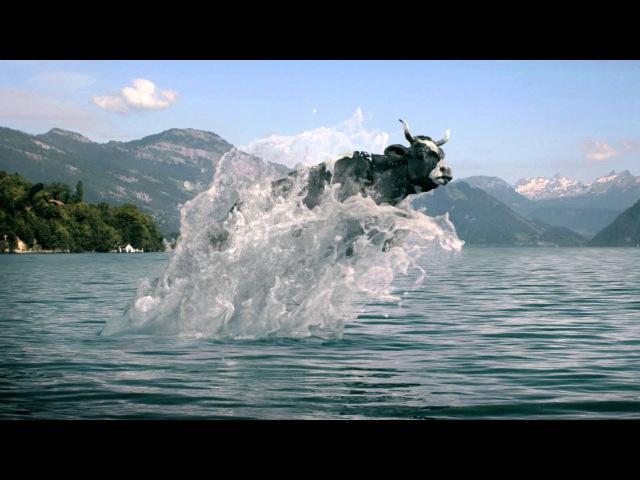 Werbespot: Die Kuh Lovely geht auch als Delfin durch