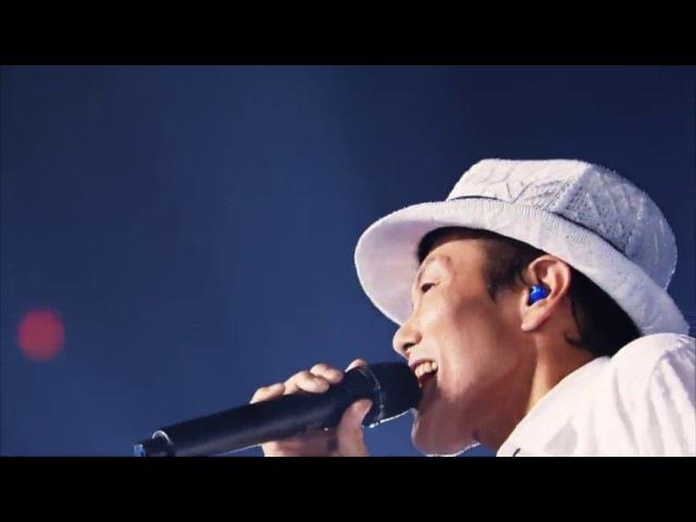 Wada Koji Butterfly LIVE!