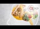 Лекция профессора МГУ, доктора биологических наук Вячеслава Дубынина: Мозг и еда, мозг и голод