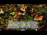 Гимны надежды/гимн№77/О дивный мой Спаситель/караоке