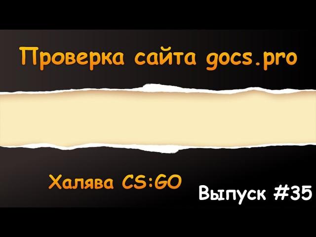 Проверка вывода gocs.pro | Халява CS:GO 35