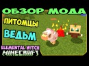 ч.227 - Питомцы Ведьм Elemental Witch Mod - Обзор мода для Minecraft