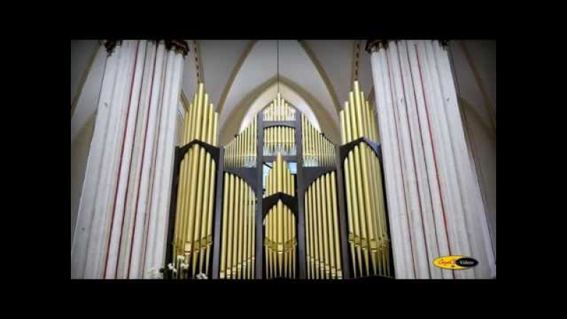 Cathedral de Brujas Bélgica LIUDMILA MATSYURA recital de órgano