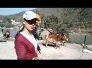 26 февраля 2017 г. Индия \ Ришикешь. Замерзшие туристы и обмен валют
