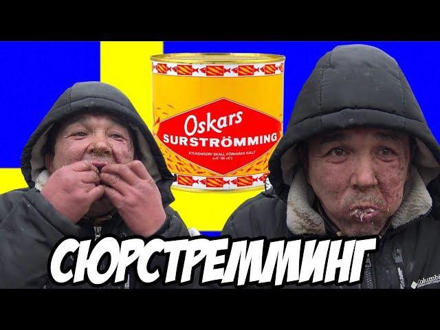 ЖЕСТЬ СЪЕЛ БАНКУ СЮРСТРЁММИНГ- SURSTRÖMMING ЗА 500 РУБЛЕЙ