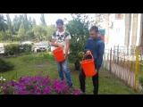 Репортаж Яковлева Никиты 12 лет , Киселева Романа 12о