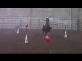 Ковбойский чемпионат