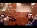 оркестр Виртуозы Мулловки