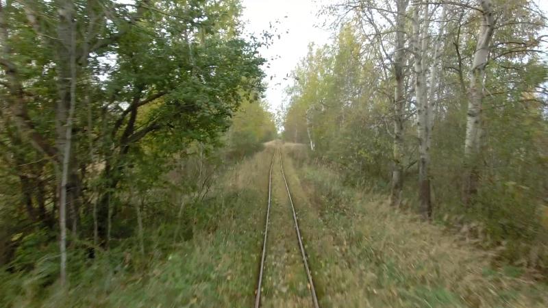 Тёсовская узкоколейная железная дорога 2