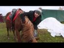 Прогулка на лошадях в рамках Гладиаторов бизнеса. Конный клуб Royal Horse. Кострома