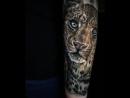Идеи татуировок Jordan Croke (Inst: @jordancroketattoo)