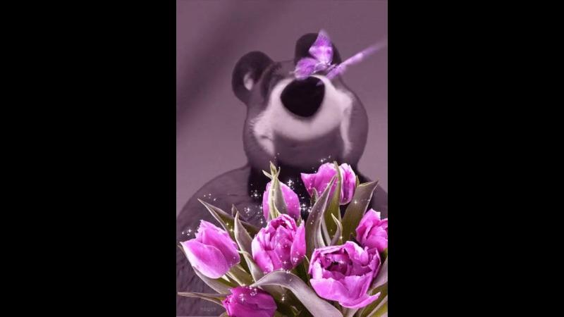 Ещё чуть чуть и наступят теплые деньки Птички запоют Цветочки зацветут Потекут по улицам ручьи у детей сопли у МУЖ