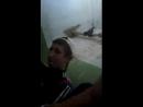 Виктор Крысин - Live