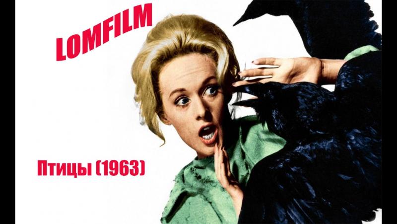 Смотрим вместе *** Птицы (1963)