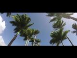 Monoir Osaka feat. Brianna - The Violin Song (Consoul Trainin Remix) (Official Lyric Video)