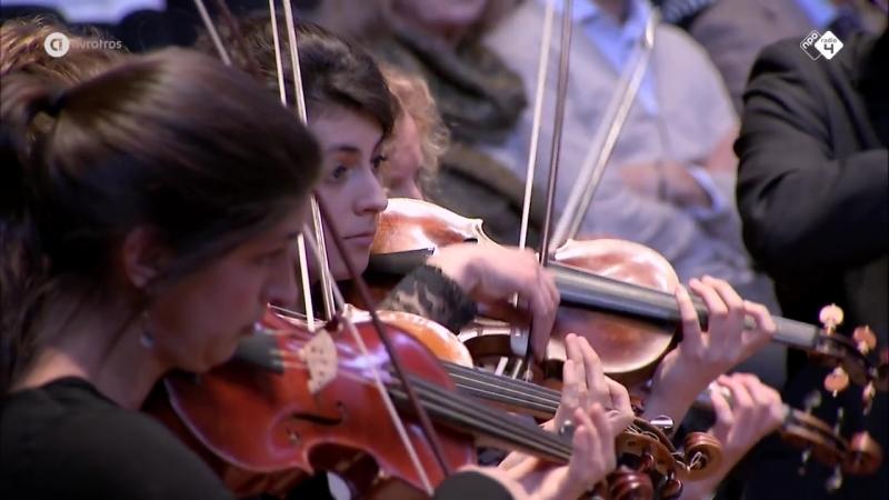 1050 J.S. Bach - Brandenburg Concert in D. Major nr. 5 - Hofkapelle München - Rüdiger Lotter