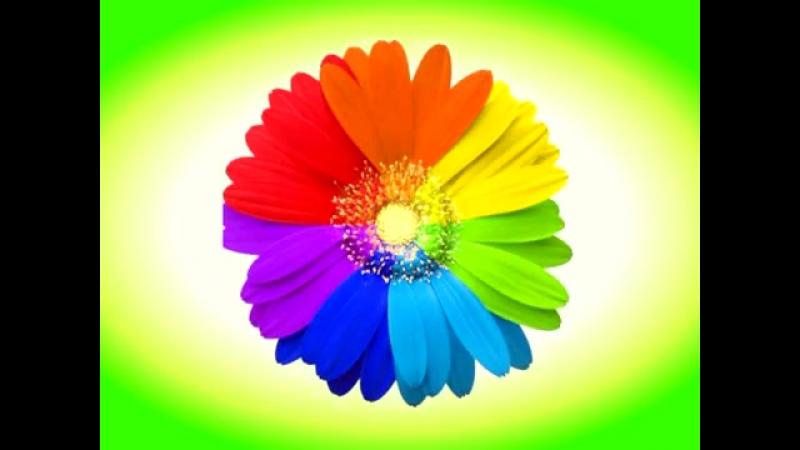 Цветик семицветик интересное видео - футаж.