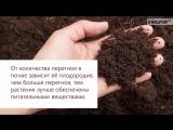Образование почвы Плодородие Окружающий мир 3 класс #6 Инфоу