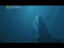 Доисторические хищники Акула чудовище