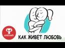 Короткометражный мультфильм о любви. Как живет любовь!