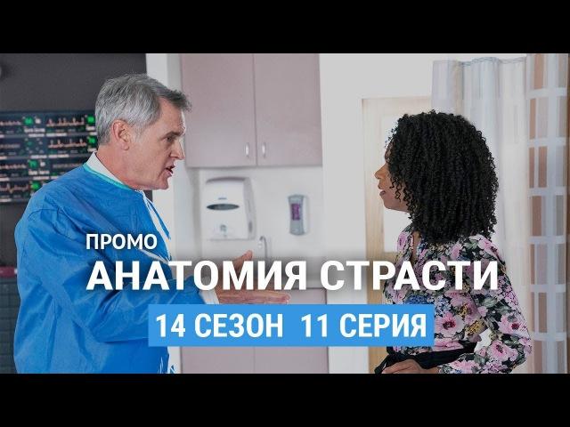 Анатомия страсти 14 сезон 11 серия Русское промо
