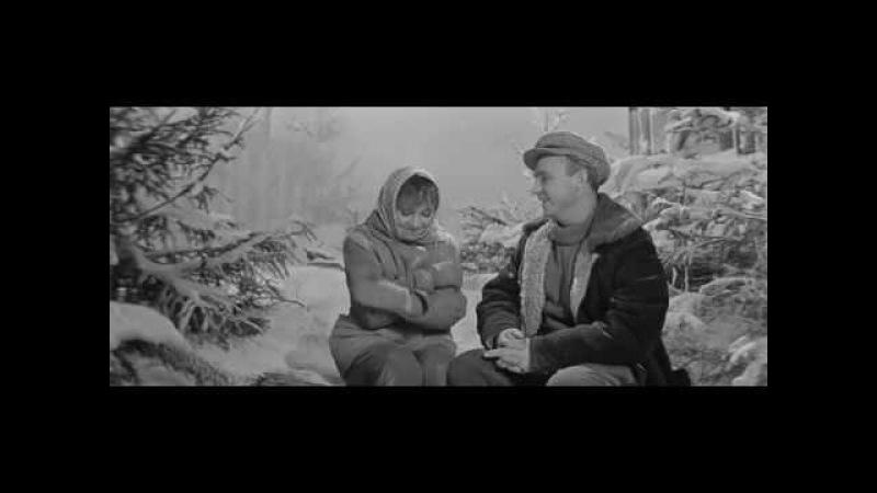 Девчата фильм 1961. Внимательный ли вы зритель ?
