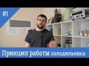 Принцип работы бытового холодильника