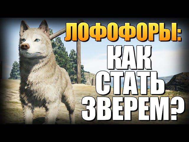 GTA 5 - Как Играть за Животных? (Лофофоры) 6