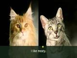 Meow Mix Song - Ten Minute Loop!