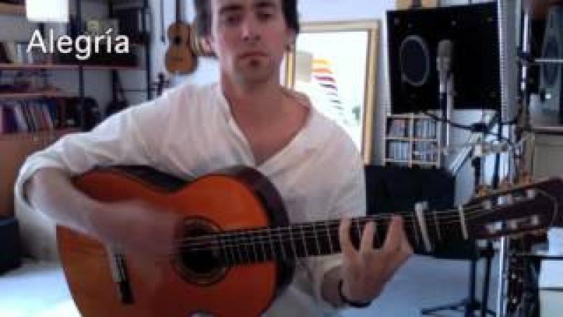 Flamenco Gitarre WS: Alegría, Taranto, Colombiana (AUSSCHNITTE)