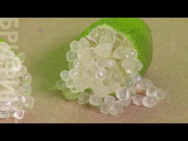 Новый фрукт: пальчиковый лайм