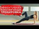 Эффективная Круговая ЖИРОСЖИГАЮЩАЯ Тренировка Интервальная Тренировка В Дома
