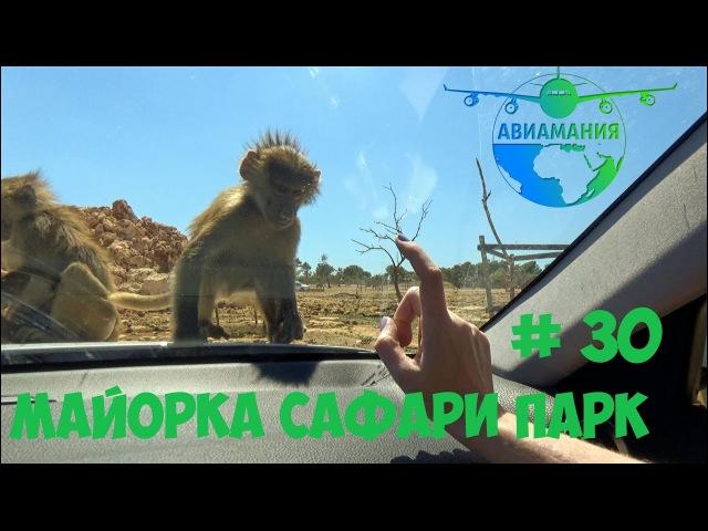 Майорка Сафари парк голодные обезьяны атакуют safari zoo 30 Авиамания