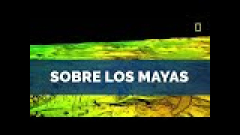 ¡Nuevos descubrimientos mayas confirman al Libro de Mormón!