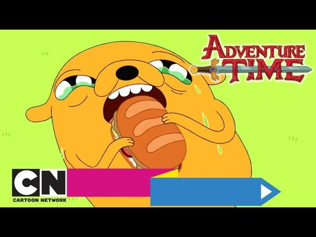 Время приключений | Cэндвич времени Слишком стара (серия целиком) | Cartoon Network