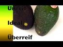 Avocado - reif oder unreif