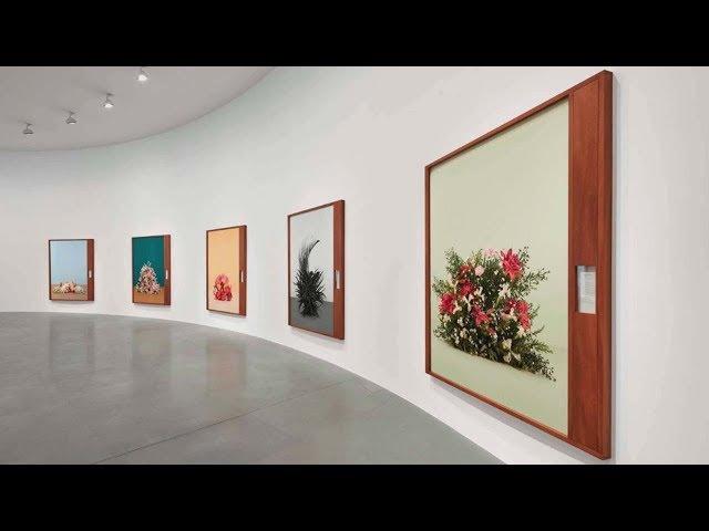 Фрагмент лекции «Натюрморт в современной фотографии» Валерия Нистратова