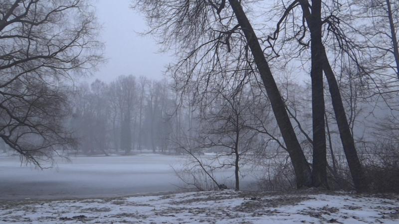 13.12.2017 год. Санкт-Петербург. Елагин остров. Снег идет, Видео Н.Кутиковой