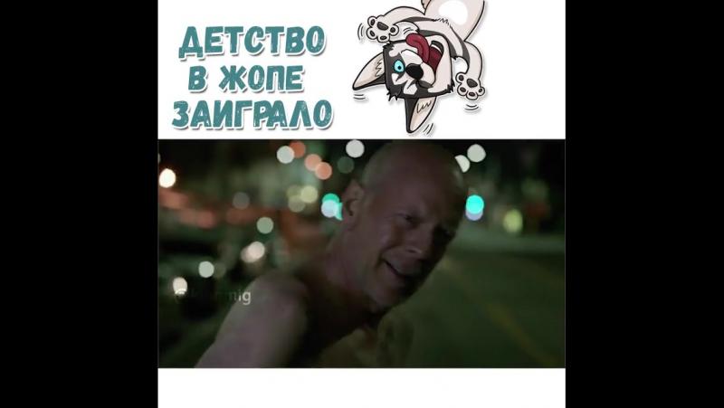 Его собачье дело
