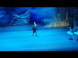 Лебединое озеро,театр оперы  и балета им М И Глинки