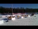 VID_20140323_100203 гонки на собаках в Малиновке