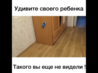 АНТИГРАВИТАЦИОННАЯ ЧУДО-МАШИНКА WALL RACER