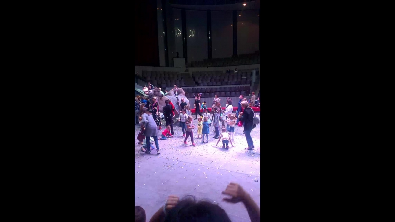 Цирк 19.082017