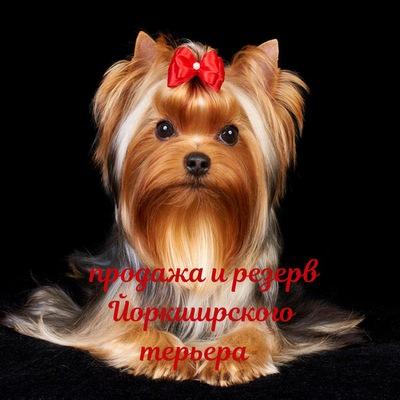 Любовь Барковская