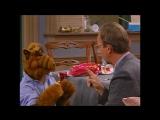 Alf Quote Season 1  Episode  3_Еда