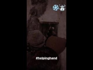Gustav Schäfer Instagram Stories (11.12.2017): Помощница ❄ ⛄