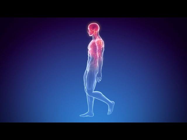 FULL RESTORE of BODY HEALING 10'000Hz Brain Massage 40Hz SUPER Binaural Beats Activation Frequency