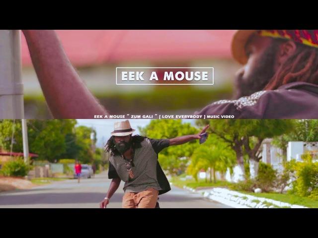 Eek a Mouse |