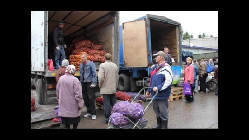 Уличная торговля овощами. Секреты выгодных закупок. Если вы решили заняться уличной торговлей)